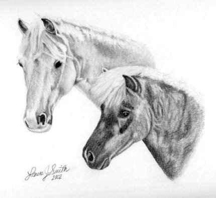 White Horse and Pony